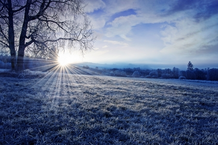 Photo pour winter morning with sunrise - image libre de droit