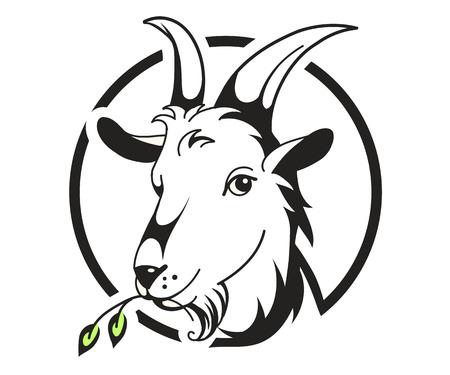 Illustration for Head of goat on white background, vector illustration - Royalty Free Image