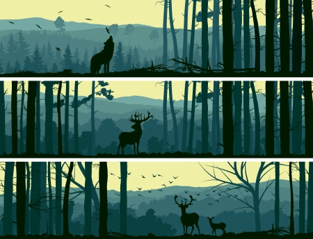 Illustration pour Horizontal abstract banners of wild animals (deer, wolf) in hills of forest with trunks of trees in green tone. - image libre de droit