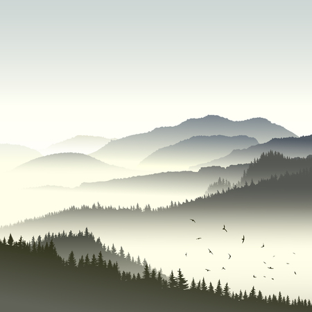 Illustration pour Square illustration morning misty coniferous forest on hills in fog with flock of birds. - image libre de droit