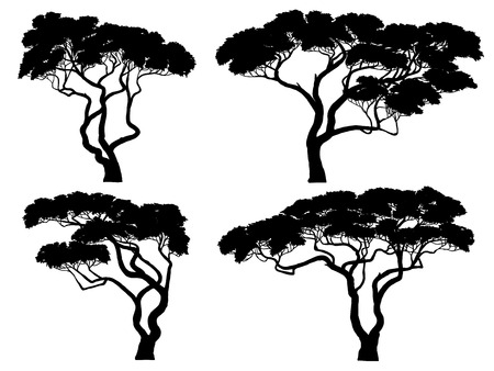Illustration for Set of vector silhouettes of African acacia trees. - Royalty Free Image