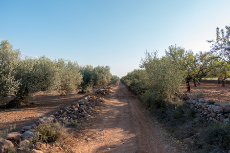 The road to Santiago and the via augusta in Castellon, Spain