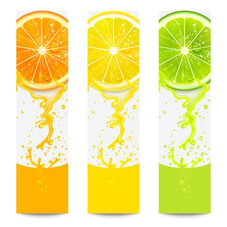 Ilustración de banners with fresh citrus fruit on a white background - Imagen libre de derechos