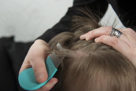 Photo pour Mother checking childs head for lice with a comb - image libre de droit