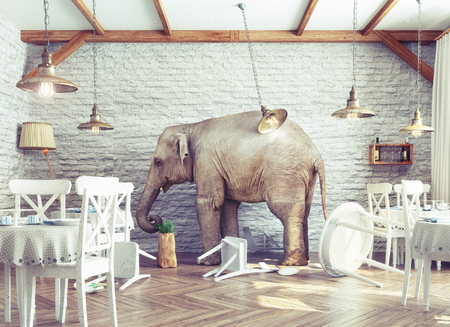 Foto de an elephant calm in a restaurant interior. photo combination concept - Imagen libre de derechos