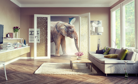 Foto de Big elephant, walking in the apartment rooms. 3d concept - Imagen libre de derechos
