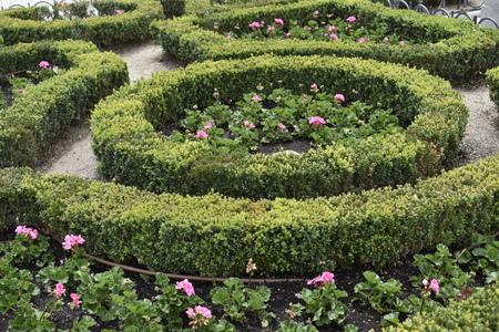 Foto de Beautiful well-kept gardens designed with geranium flowers, some make drawings - Imagen libre de derechos