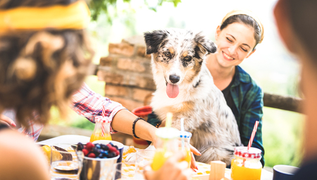 Photo pour Happy friends having healthy pic nic breakfast at countryside farm house - Young people millennials with cute dog having fun together outdoors at garden party - Food and beverage lifestyle concept - image libre de droit