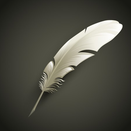 Illustration pour White Feather. Vector object illustration - image libre de droit