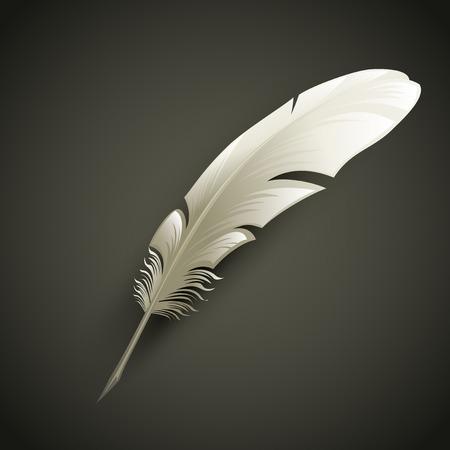 Ilustración de White Feather. Vector object illustration - Imagen libre de derechos