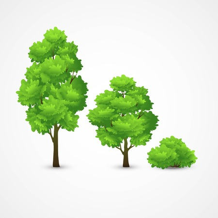 Illustration pour Illustration of a set of different trees. Vector illustration EPS 10 - image libre de droit