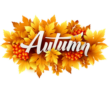 Illustration for Autumn typographic of Fall leaves - Royalty Free Image