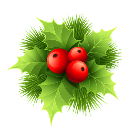 Illustration pour Vector Christmas holly with berries. Vector illustration EPS 10 - image libre de droit