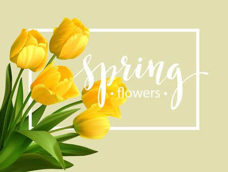 Illustration pour Spring text with  tulip flower. - image libre de droit