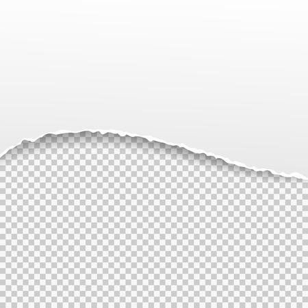 Illustration pour Torn paper banner on the transparent background. Vector illustration EPS10 - image libre de droit