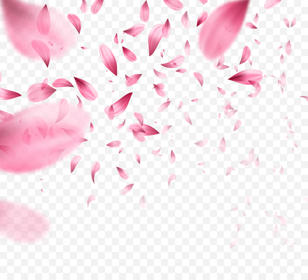 Illustration for Pink sakura falling petals background. Vector illustration - Royalty Free Image