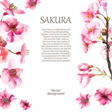 Ilustración de Watercolor cherry blossom. Hand draw cherry blossom sakura branch and flowers. Vector illustrations. - Imagen libre de derechos