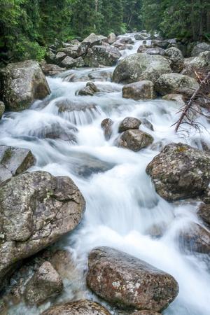 Photo pour Mountain stream in High Tatras National Park, Slovakia, Europe. - image libre de droit