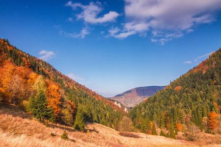 Photo for Autumn landscape in The Mala Fatra national park, Slovakia, Europe. - Royalty Free Image