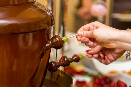 Photo for Chocolate grapes on a stick Buffet Catering - Royalty Free Image