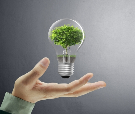 Photo for Light bulb, in a hand  - Royalty Free Image