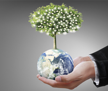 Foto de Globe ,earth in human hand, hand holding our planet earth glowing.  - Imagen libre de derechos