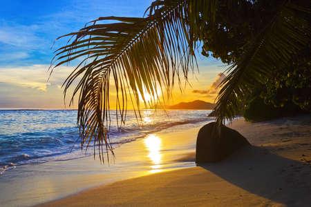 Photo pour Tropical beach at sunset - nature background - image libre de droit