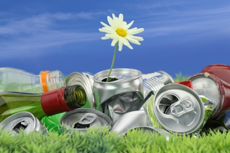Photo for Environmental conservation concept. Garbage with growing daisy  - Royalty Free Image