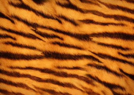 Foto de tiger skin - Imagen libre de derechos