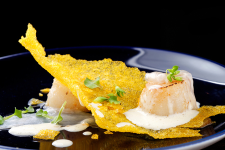 Haute cuisine, Gourmet food scallops on a corn crunch