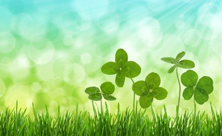 Photo pour Four-leaf clovers in grass against blurred natural background. - image libre de droit
