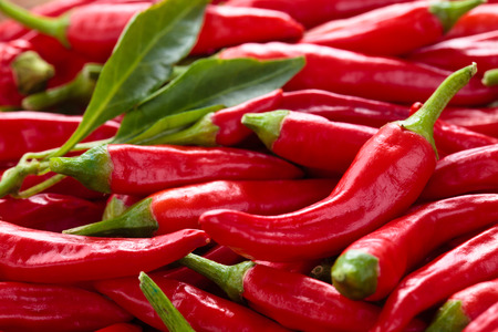 Photo for Background of ripe red chili peppers . - Royalty Free Image