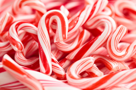 Photo for Festive red and white peppermint candycanes  background. Shallow dof. - Royalty Free Image