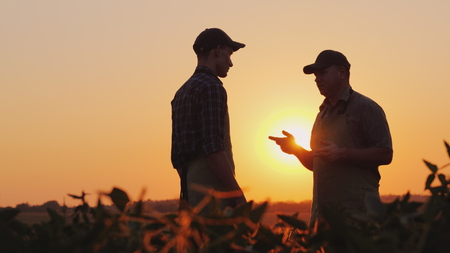 Foto de A young and elderly farmer chatting on the field at sunset - Imagen libre de derechos