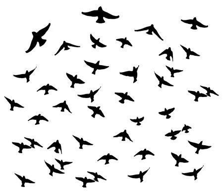 Ilustración de Bohemian waxwing in the flight isolated silhouettes. - Imagen libre de derechos
