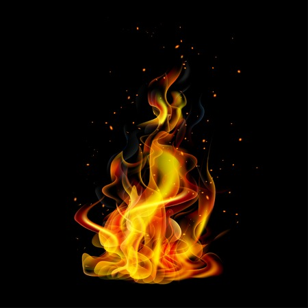 Illustration for Realistic fire on a black background vector - Royalty Free Image