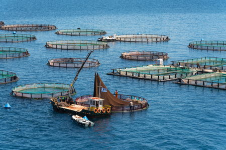 Foto de Fish farming on the sea. Corfu Island. Greece. - Imagen libre de derechos