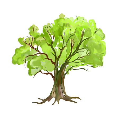 Illustration pour Tree vector illustration  hand drawn  painted watercolor - image libre de droit