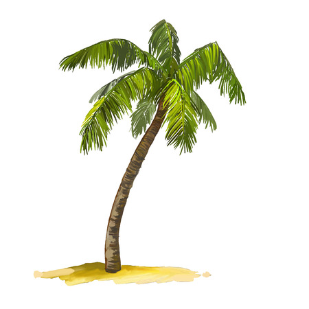 Illustration for palm tree vector illustration  hand drawn  painted watercolor - Royalty Free Image