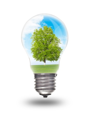 Light bulb with landscape inside isolated on white. Environmental concept Renewable Energy