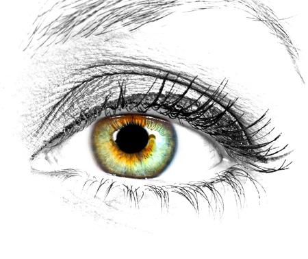 Foto de Beautiful Eye of Woman over white background - Imagen libre de derechos