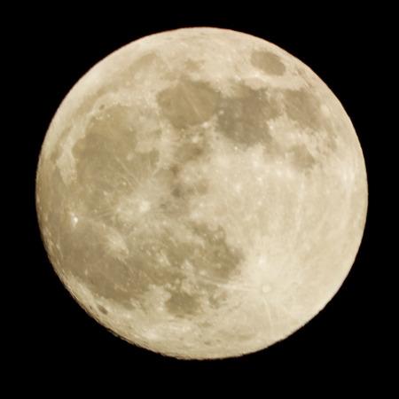 Foto de Full moon on the black background. close-up - Imagen libre de derechos