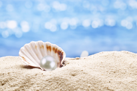 Foto de Pearl oyster in the sand. Blurred sea at the background. - Imagen libre de derechos