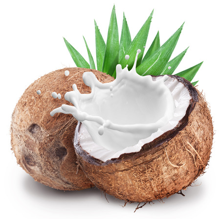 Photo for Coconut with milk splash inside. File contains clipping paths. - Royalty Free Image