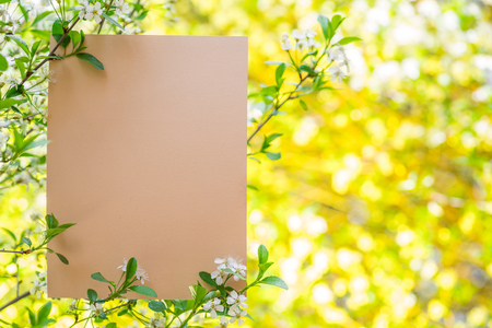 Photo pour Paper blank between cherry branches in blossom. - image libre de droit