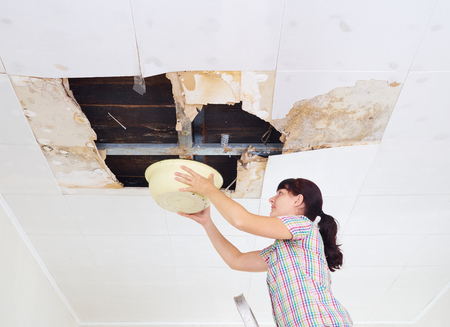 Photo pour Young Woman Collecting Water In basin From Ceiling. Ceiling panels damaged huge hole in roof from rainwater leakage.Water damaged ceiling . - image libre de droit