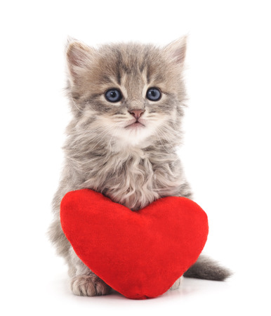 Photo pour Kitten with toy heart isolated on a white background. - image libre de droit