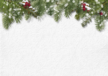 Foto per Christmas background with holly,firtree - Immagine Royalty Free