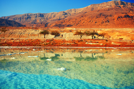 Photo pour Dead sea salt shore - image libre de droit