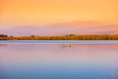 Foto de Beautiful Hula Lake against the mountains in the evening. Hula Valley in Northern Israel at sunset - Imagen libre de derechos